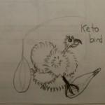 Keto bird